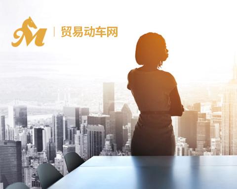 中融美(深圳)国际贸易投资有限公司